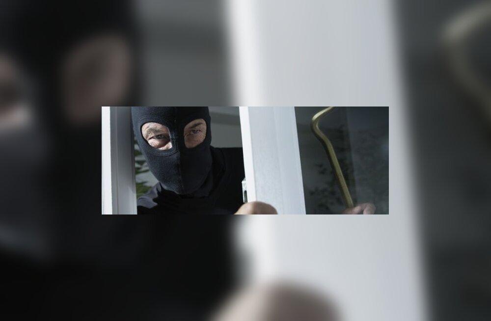 Teenistuskoer sai murdvargal sabast kinni