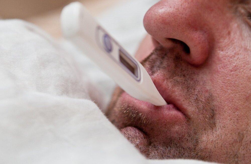121 haiglaravil, 3 surnud... gripihooaja tipp on siiski alles ees