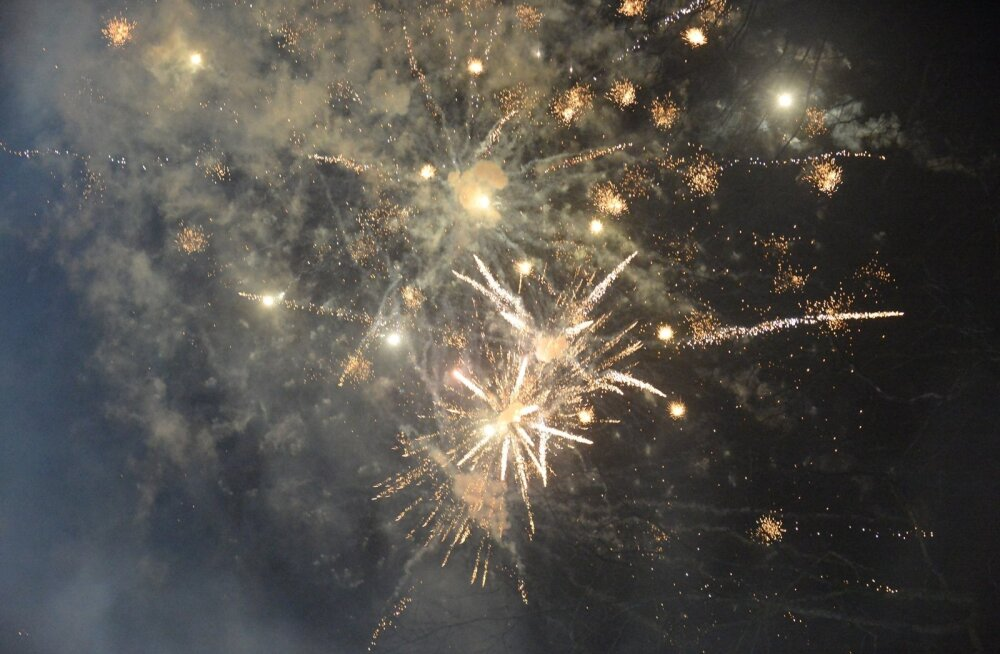 В новогоднюю ночь спасателям пришлось тушить 11 вызванных фейерверками пожаров