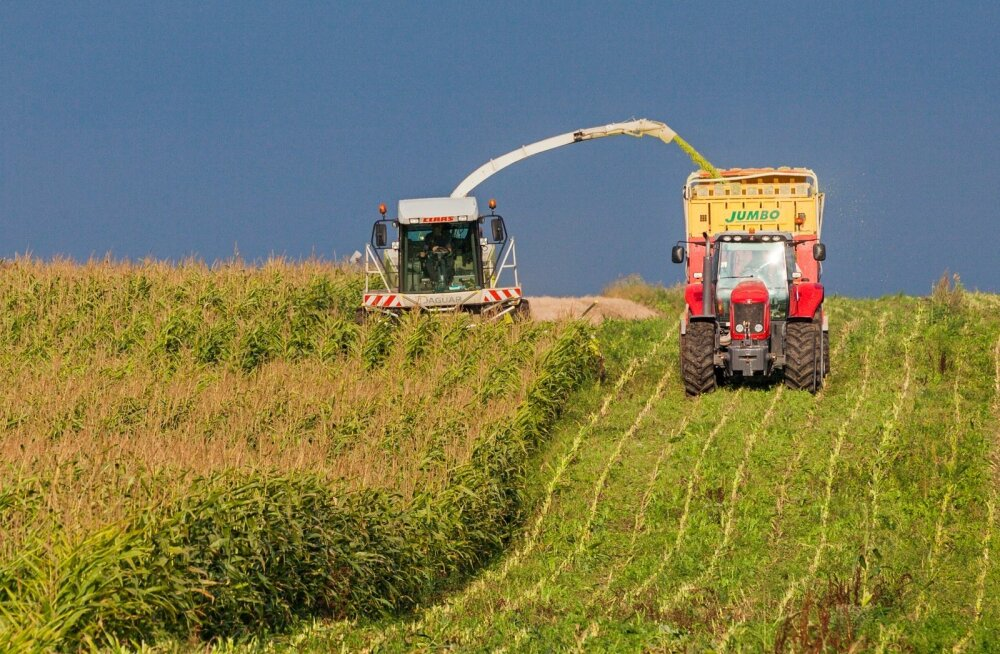 Maisikasvatus on toonud Eestisse uued võimsad masinad.