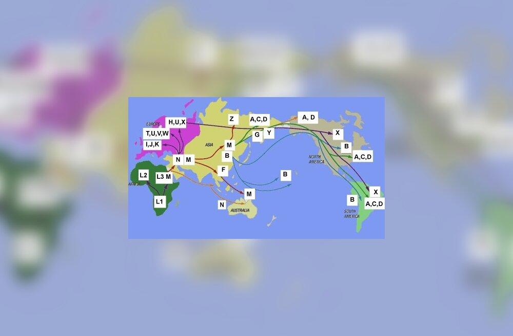 Migratsioonikaart