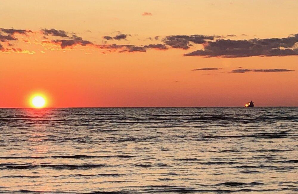 9 способов красиво отпраздновать Всемирный день моря в Таллинне