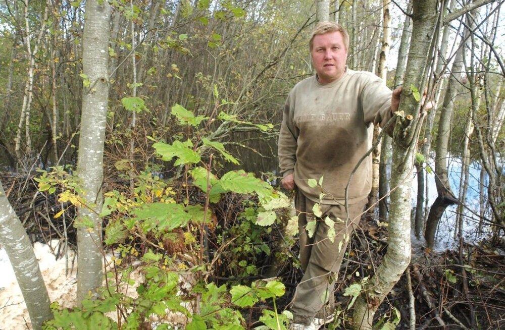 Mahetootja Teet Kuusemaa eeldas, et toetused laekuvad mitu kuud varem ning see võimaldab kuivatikompleksi ehitust alustada.