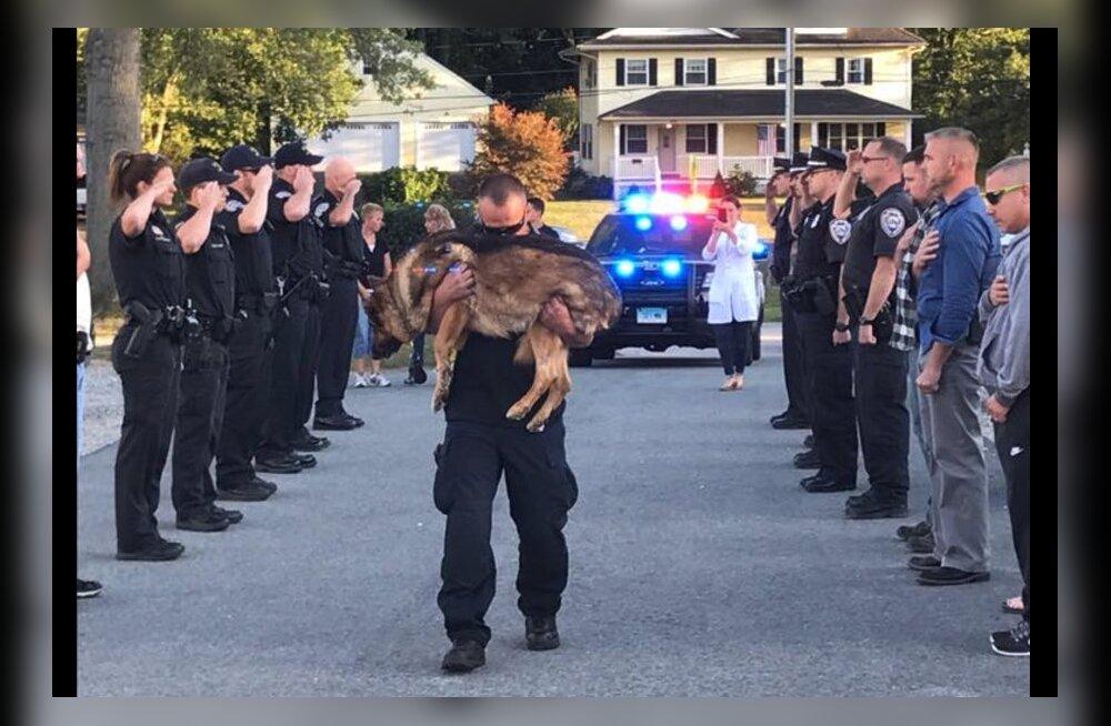 Liigutav hüvastijätt: ustav politseikoer saadeti südamlikult viimasele teekonnale