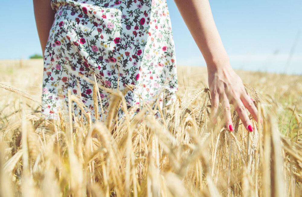 Kuidas teravdada oma tunnetust loodusega?