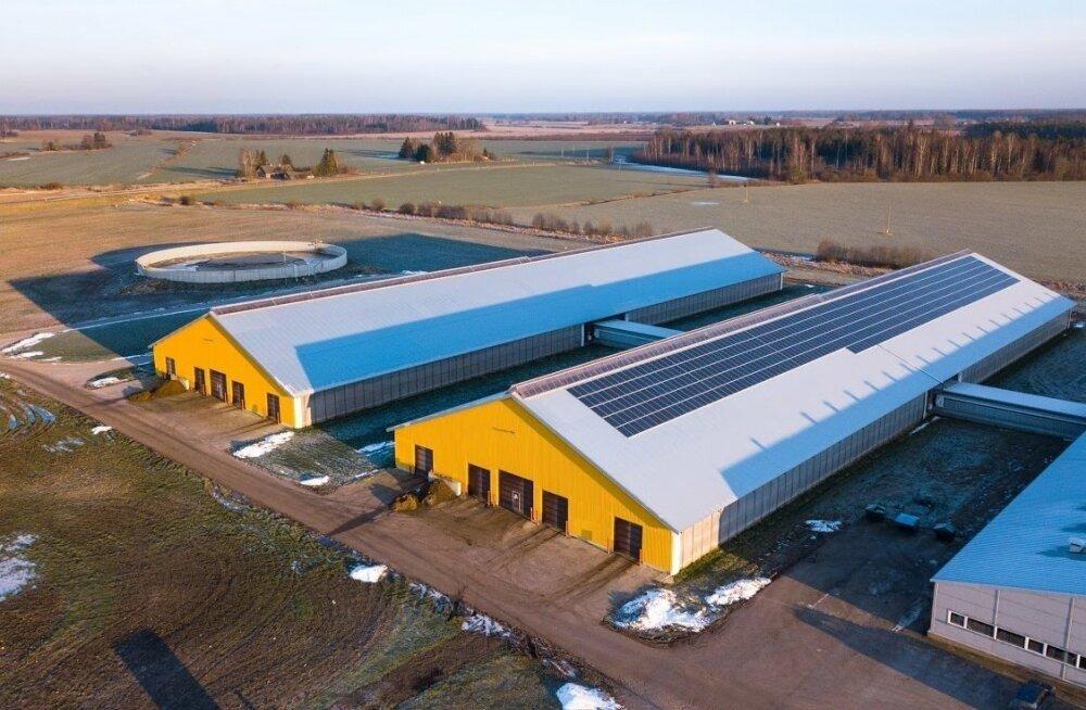 Estonia piimafarmi katusel on 644 päikesepaneeli. See annab 15% kogu farmi energiatarbest.