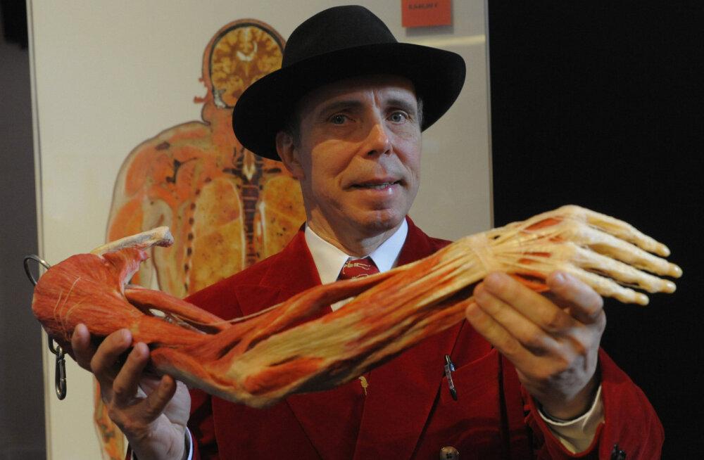 Самые жуткие экспонаты мира: анатомические музеи не для слабонервных