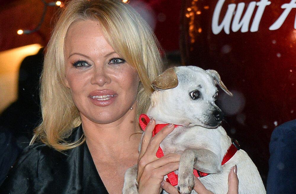 KUUM KLÕPS | 52-aastase Pamela Andersoni postitus nooruspõlvest jätab fantaasiale ikka väga vähe ruumi: armastus on tingimusteta