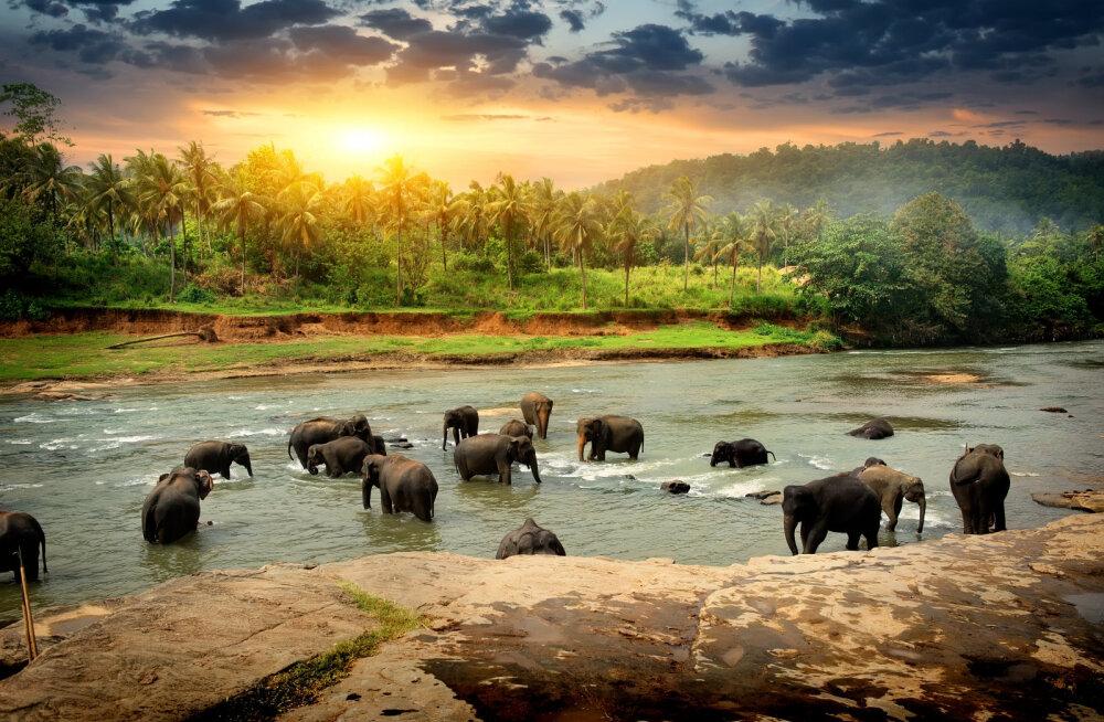 JAANUARI HITID | Kuus eksootilist sihtkohta, kuhu on kõige soodsam reisida just aasta esimesel kuul