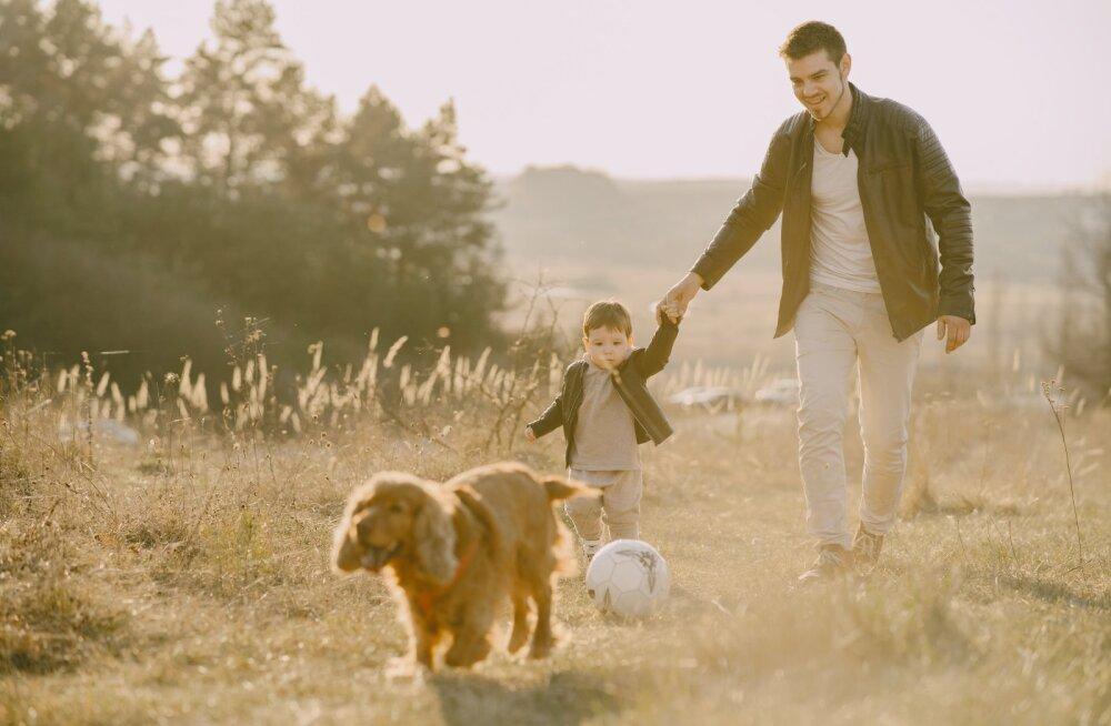 ТОП-5 пород собак для детей, по мнению кинологов