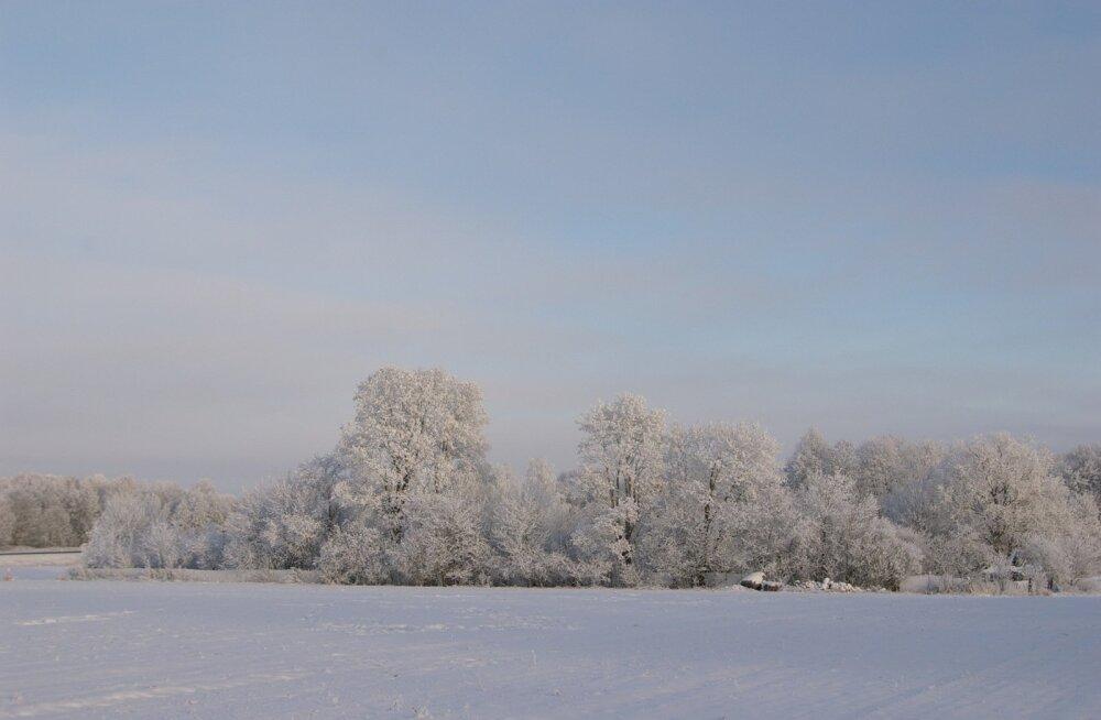 2. detsembri ilm Jõgeval
