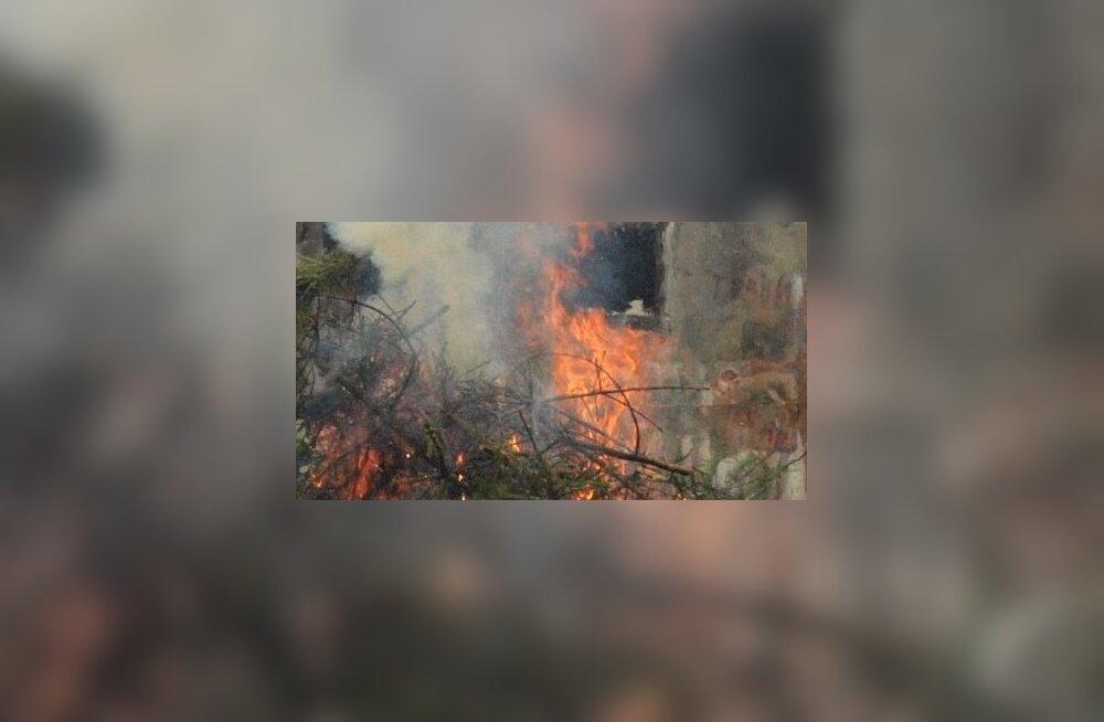 Kulureidi tulemus: lõkked vastasid tuleohutusnõuetele