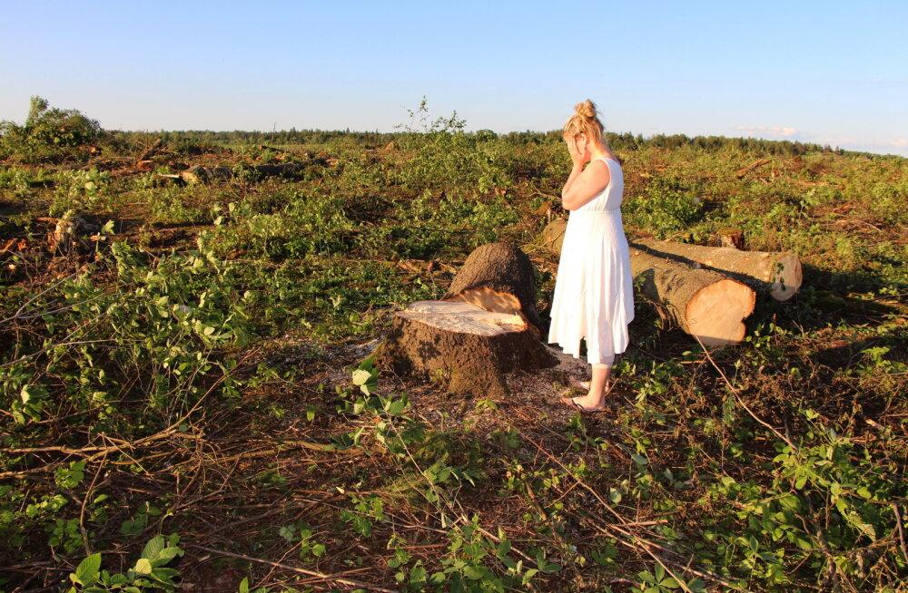 Maavalla koda: riik lubab aina sagedamini looduslike pühapaikade hävitamist