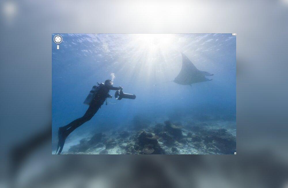 FOTOD-VIDEO: Google Street View sukeldus ookeani sügavustesse
