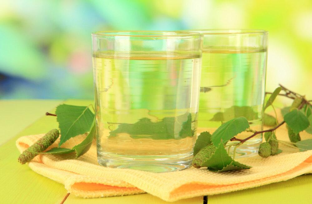 Kasemahl - nooruse eliksiir, mis puhastab ja turgutab talvest räsitud keha ning puhastab maksa