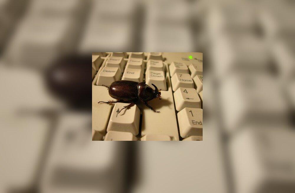 Sitikas klaviatuuril