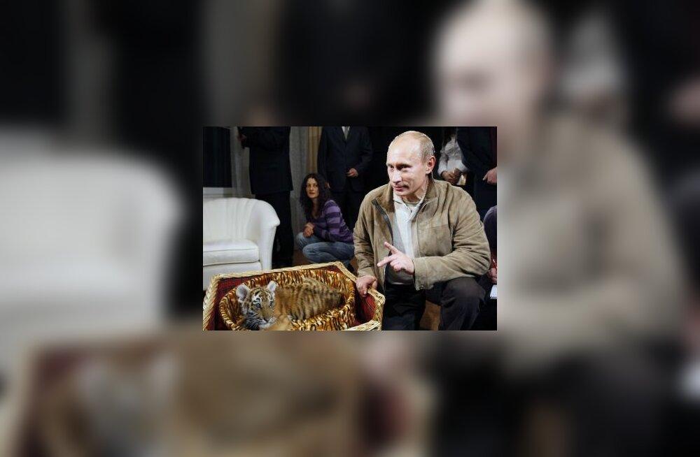 """Россияне назвали """"путинский период"""" лучшим за последние 100 лет истории страны"""