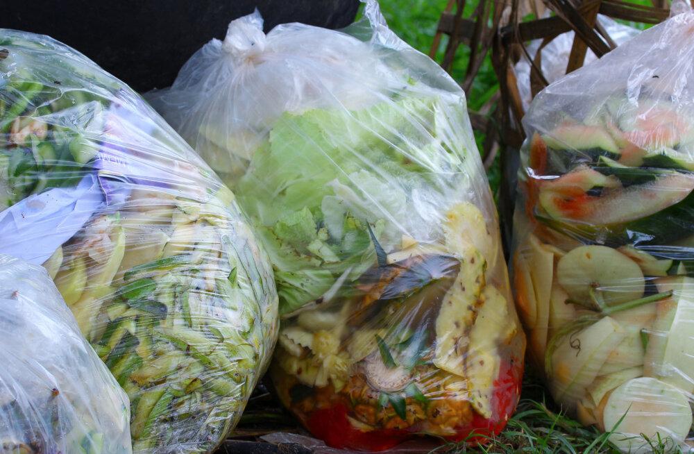 Viskad pidevalt toitu ära? Head lahendused, kuidas toidu raiskamist tunduvalt vähendada