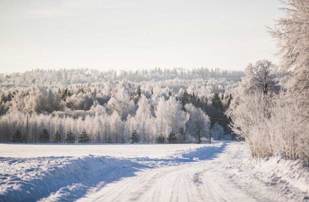 Talvine Lõuna-Eesti.
