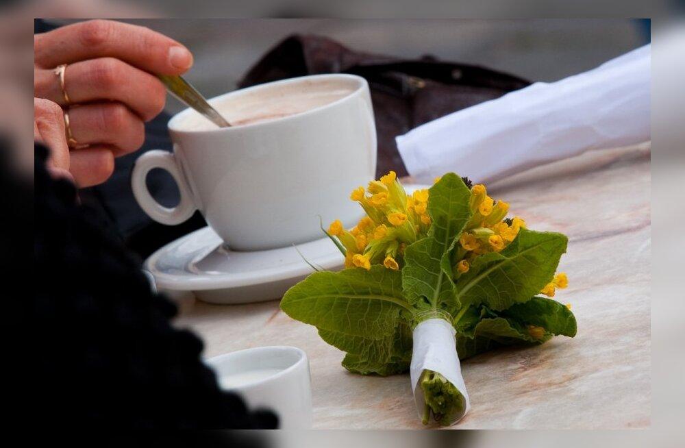 Как сварить идеальный кофе по-домашнему?