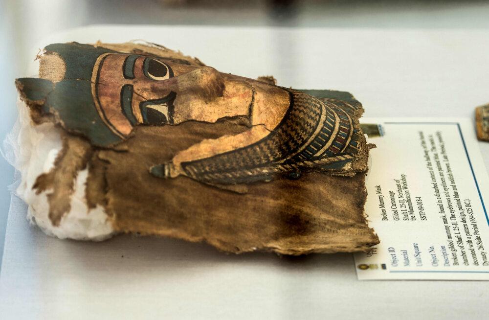 """Внимательная студентка раскрыла """"загадку"""" древнеегипетской мумии"""