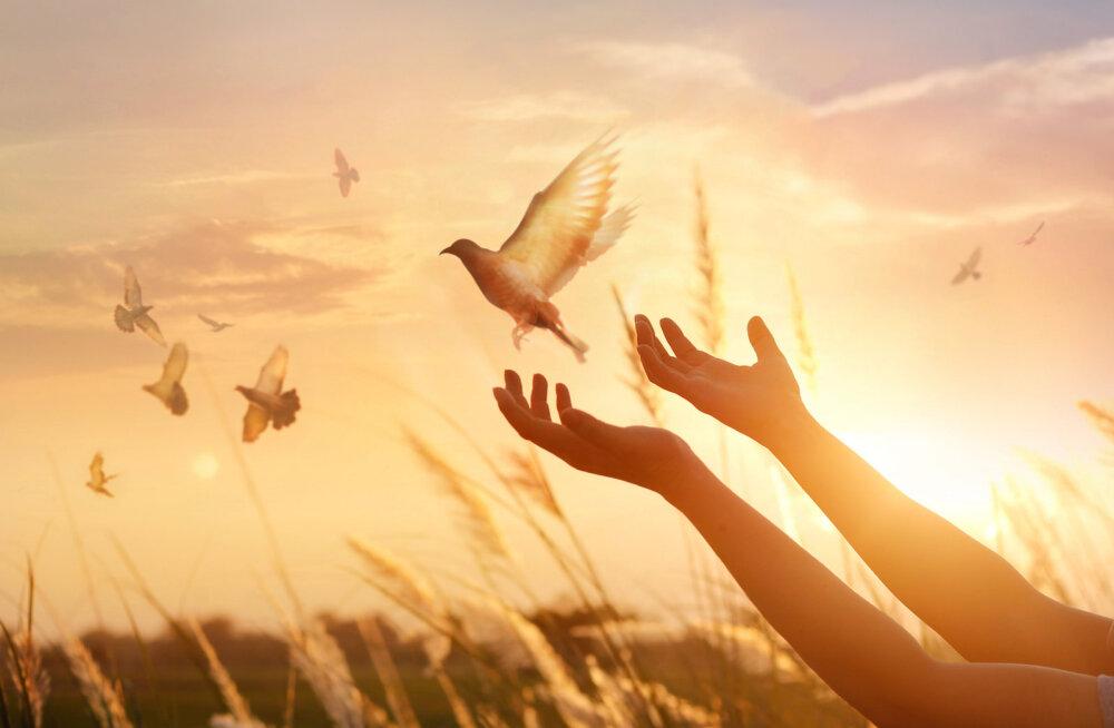 Lase oma hingelind vabaks