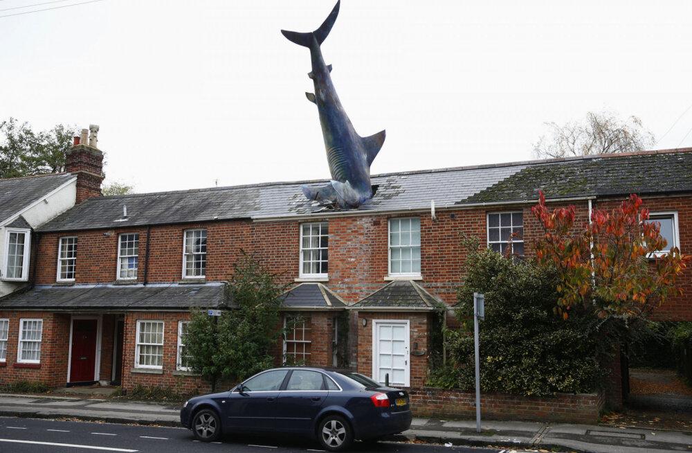 """""""Британия в лучшем своем проявлении"""": история дома в Оксфорде с торчащей из крыши акулой"""