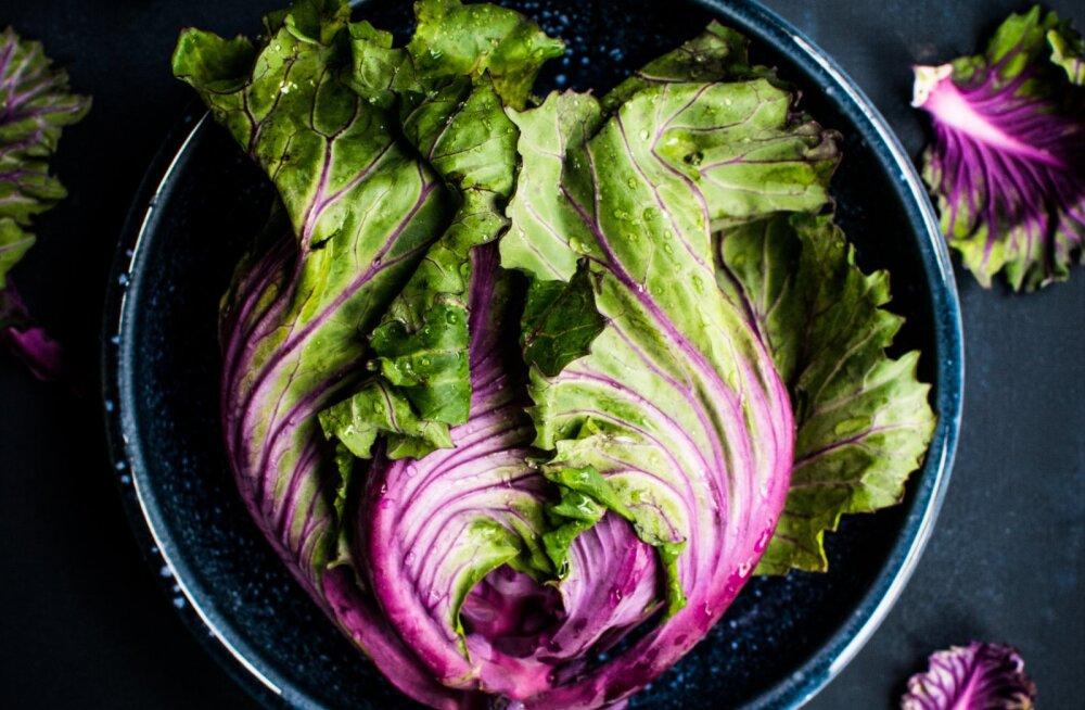 Murunäksijad, idusööjad ja porgandinärijad — kes kardab taimetoitlast ehk mis on vegefoobia?