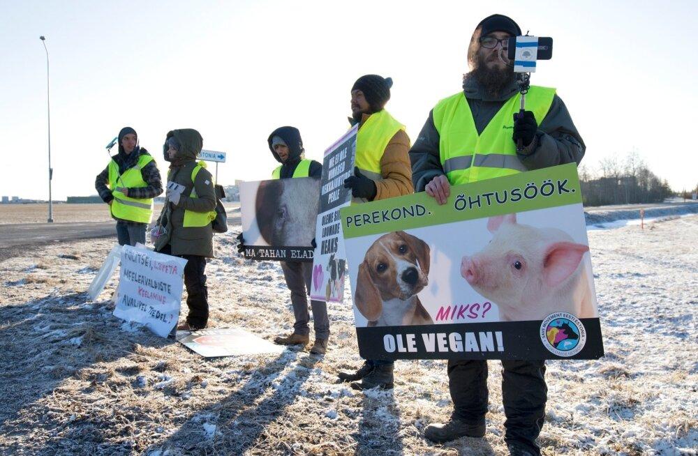 Liikumise The Save Movement Eesti esindajad Rakvere lihakombinaadi esisel meeleavaldusel, vigil-aktsioonil.