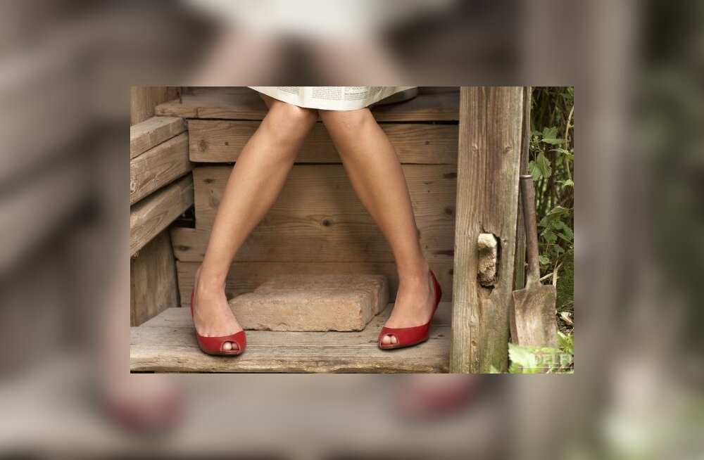 Häda ei anna häbeneda ehk tualeti ajalugu