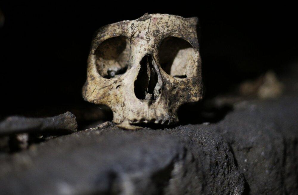 RETK MAA ALLA | Seitse erakordset katakombi, mida võiksid kindlasti külastada