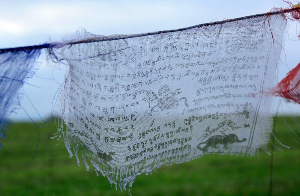 Iidse tiibeti meditsiini paastutarkus