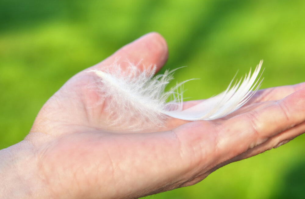 Taevased sõnumid: kuidas näha ja mõista inglite saadetud märke?