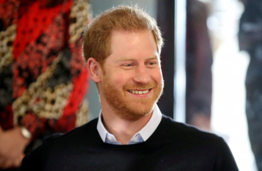 Kõigest sõnad? Prints Harry rääkis rikastele keskkonna säästmisest, kuid teda tuldi kuulama eriti reostavate eralennukite ja megajahtidega