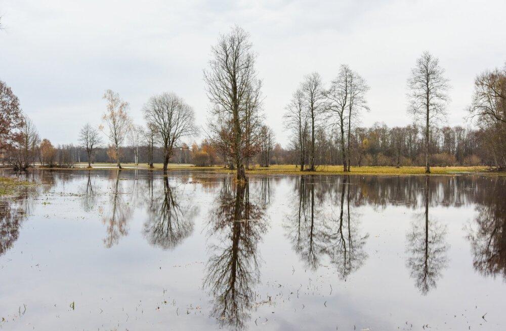 Soomaal on alanud sügisene üleujutus