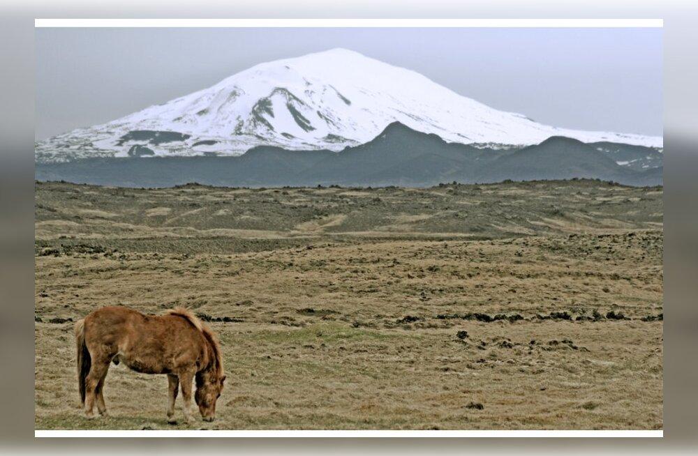 Mis toimub Islandil Heklat katva lumekooriku all?