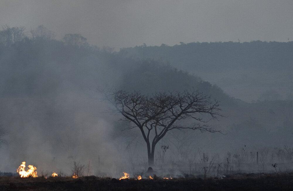 Brasiilia saadab sõjaväe Amazonase põlengutega võitlema