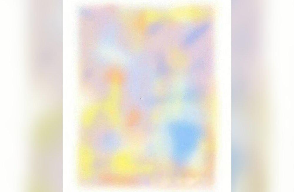 Optiline illusioon: seda pilti vaadates kaob väga ruttu su võime värve näha - õnneks ajutiselt