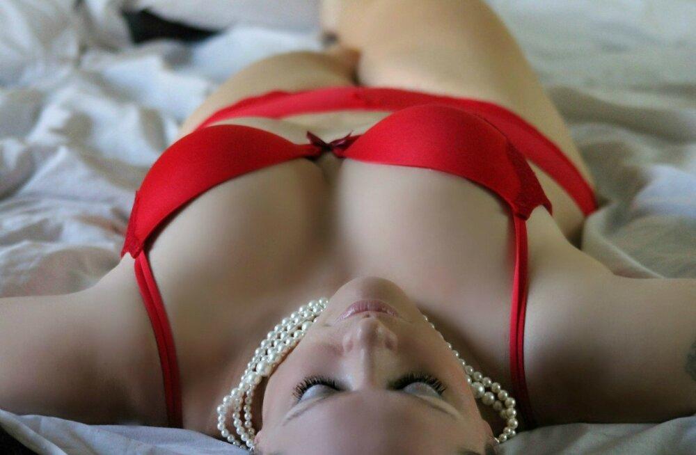 Kuidas naine orgasmini viia – seksikad sõbrapäeva kingisoovitused!