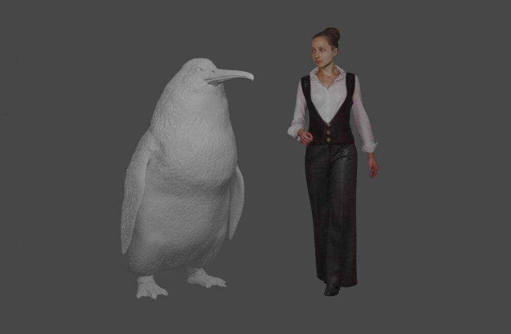 Teadlased kinnitavad: Uus-Meremaal elas inimese suurune pingviin