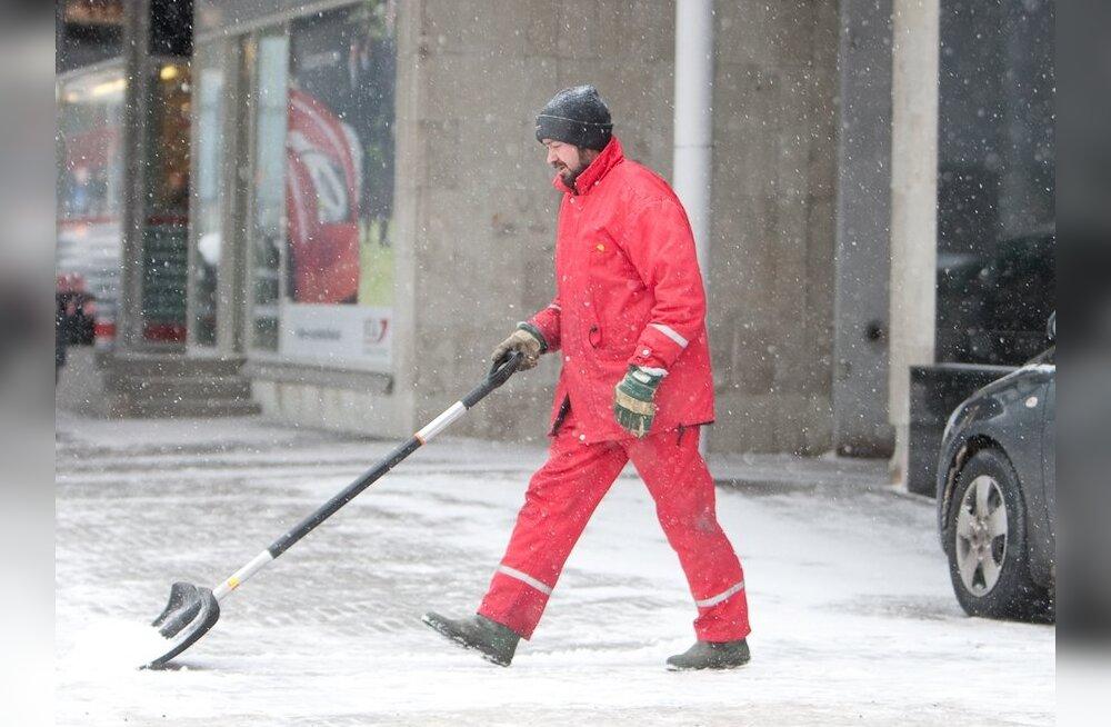 Lumelabidaid rabatakse poest lausa hulgi