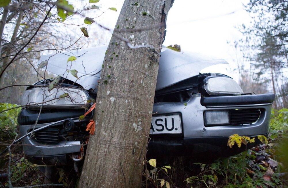 Mehed sõitsid autodega vastu puid