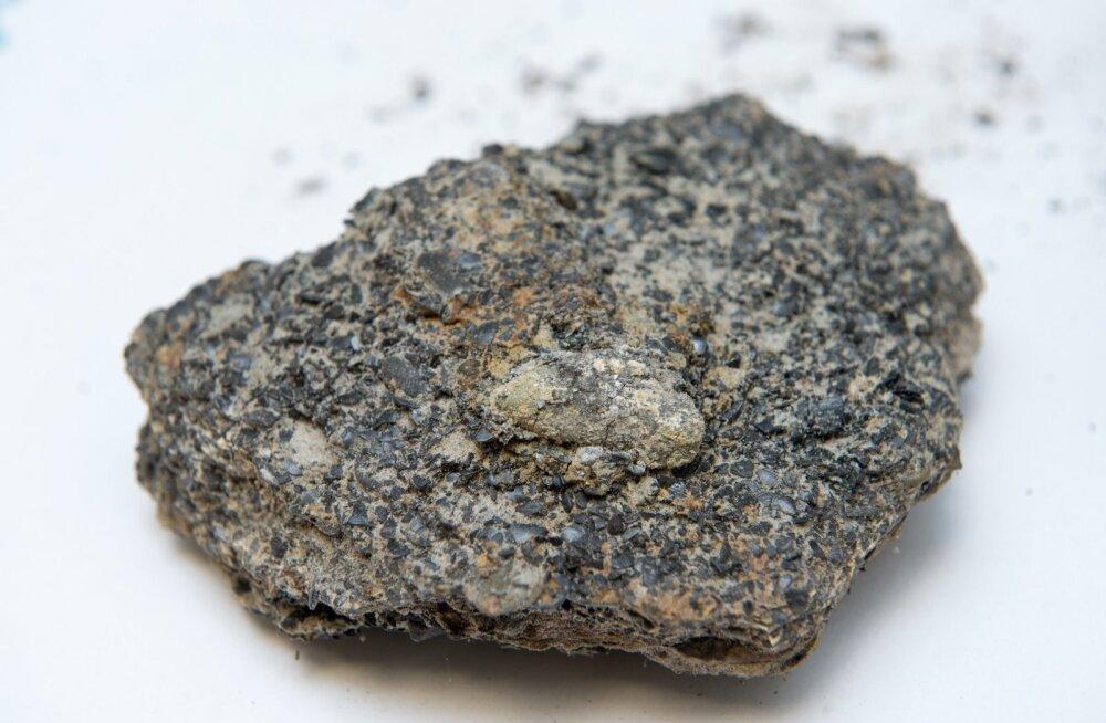 Alvar Soesoo, fosforiit