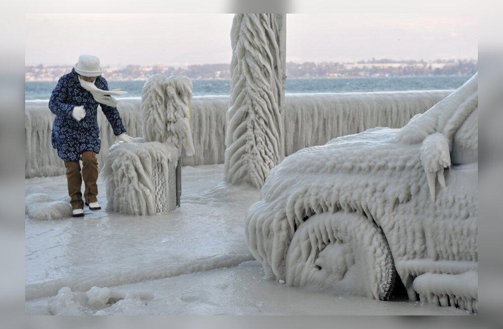 ФОТО: Лед покрыл машины, деревья и дороги Европы