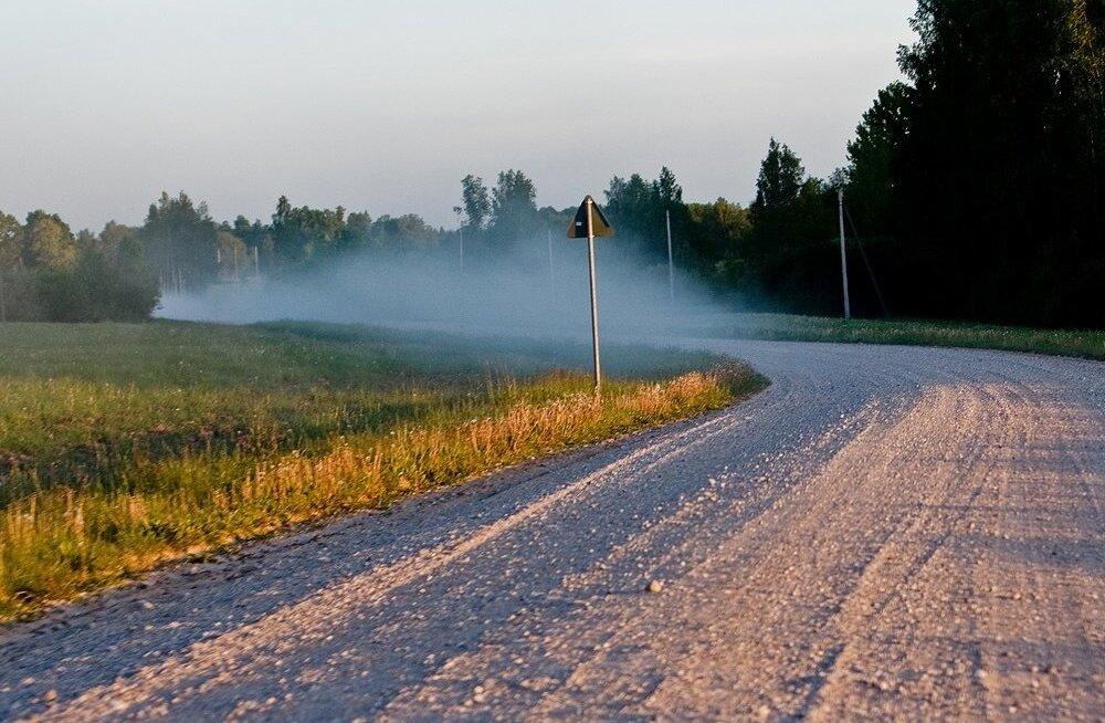 Meie auklike teede puhul pole midagi imestada, et mõned autojuhid on põrutada saanud.