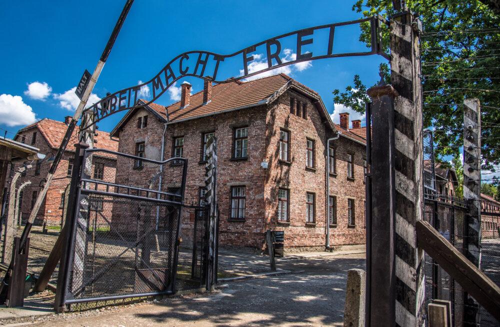 SKANDAAL | Üliõpilane varastas endisest Auschwitzi koonduslaagrist kunsti jaoks esemeid