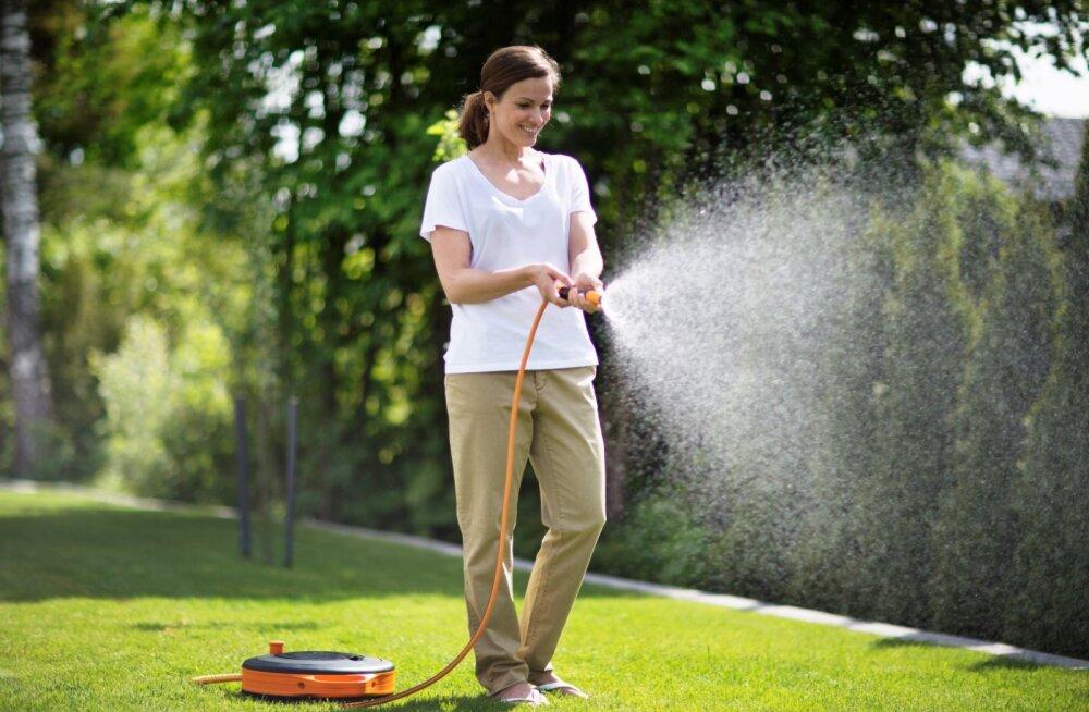 Kui õues on kuiv ja aial on janu: kas sina oskad oma taimi õigesti kasta?