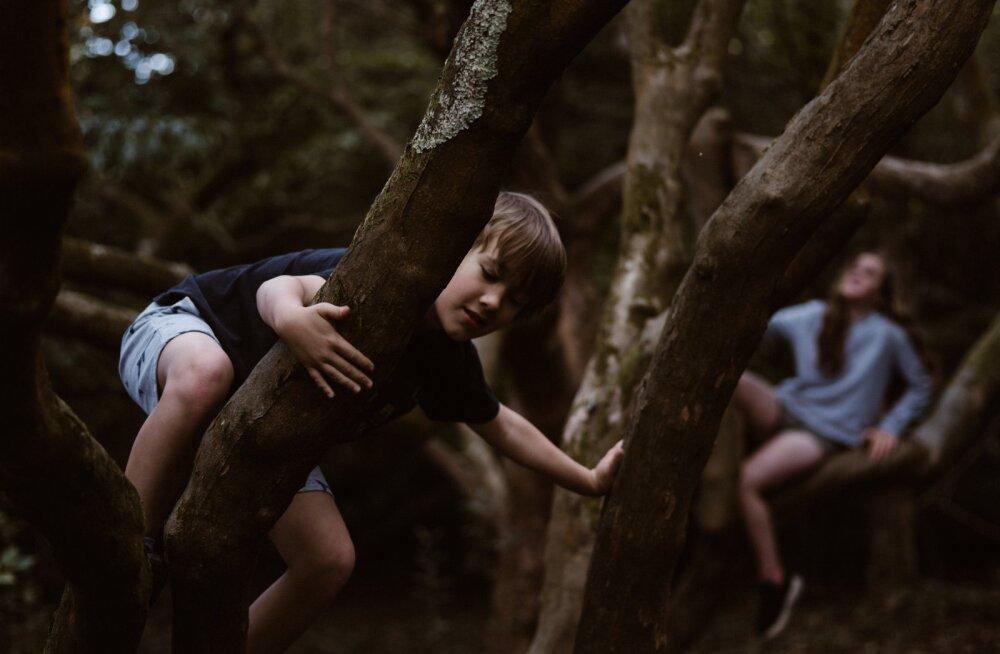 Nädalavahetuseks õue! Head moodused, kuidas matkamist lastele põnevamaks muuta