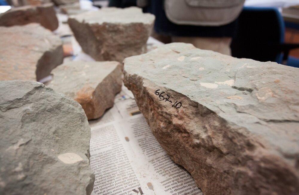 Devoniaegse kala kivistis