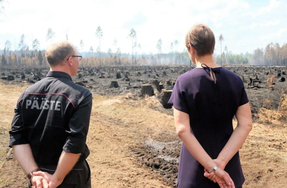 Kersti Kaljulaid ja Andres Anvelt külastasid Vikipalus kustutamistöid
